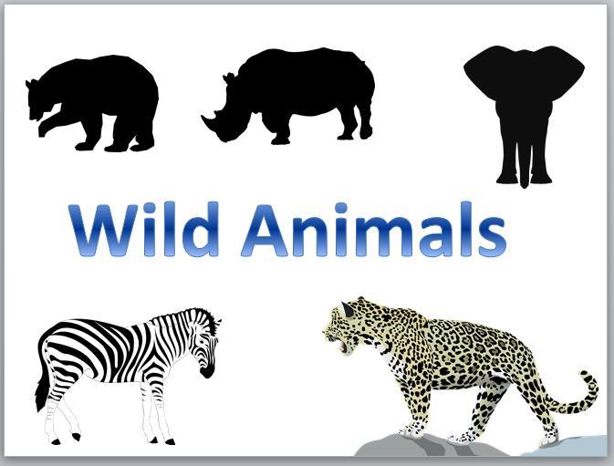spelling wild animals