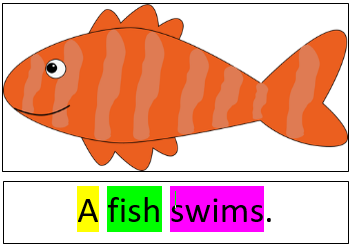 a fish swims